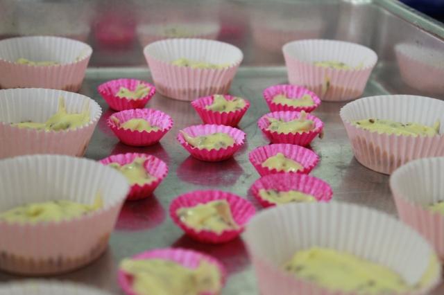 Filhote de cupcake! *0*