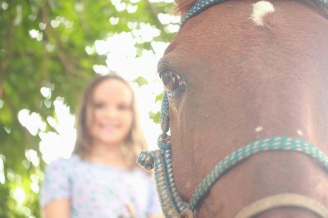 Avião - Esse é o nome do cavalo da minha irmã.